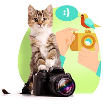 Фотограф-любитель