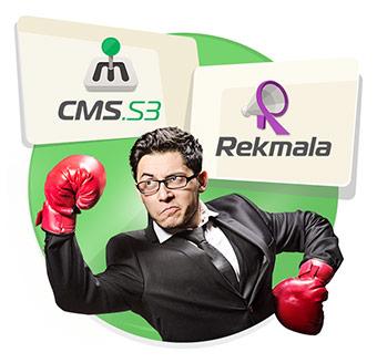 Интеграция Рекмалы в систему управления сайтом